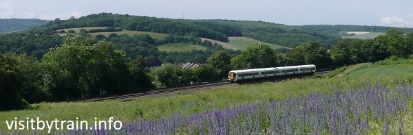 Photograph of train passing Ranscombe Farm